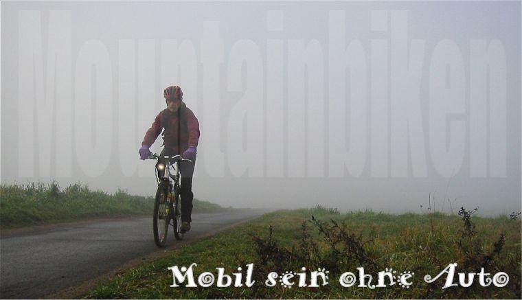 startbild144.jpg